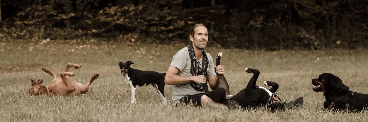 Pascal-Schmid-Profil-Hunde